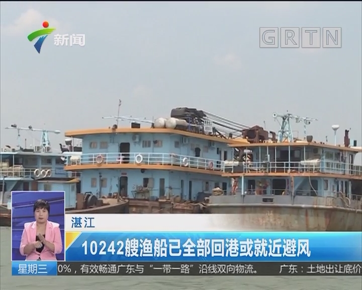 湛江:10242艘渔船已全部回港或就近避风