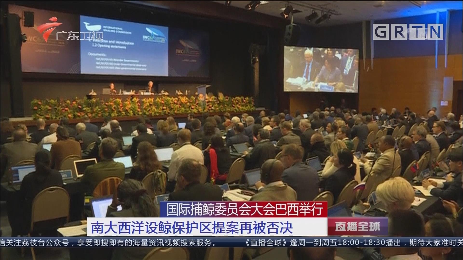 国际捕鲸委员会大会巴西举行:南大西洋设鲸保护区提案再被否决