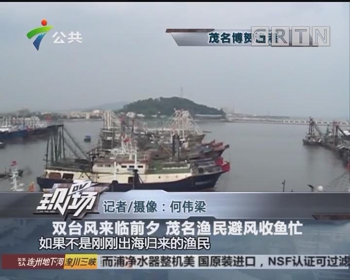 双台风来临前夕 茂名渔民避风收鱼忙