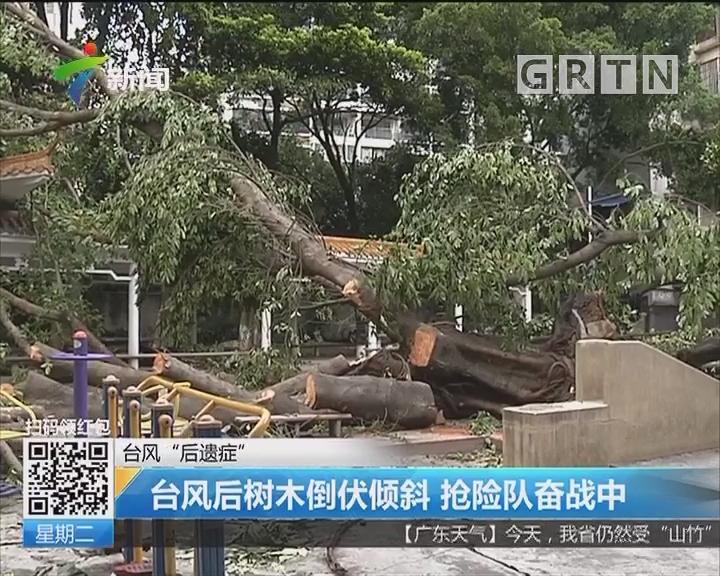 """台风""""后遗症"""":台风后树木倒伏倾斜 抢险队奋战中"""