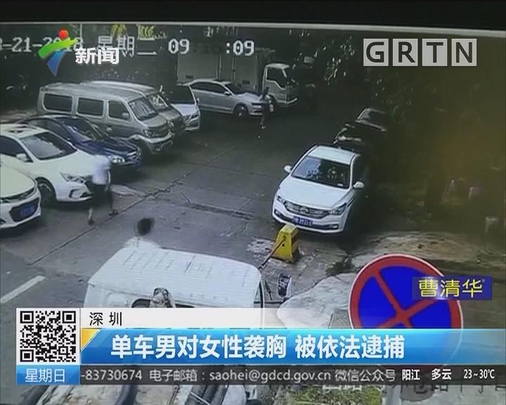 深圳:单车男对女性袭胸 被依法逮捕