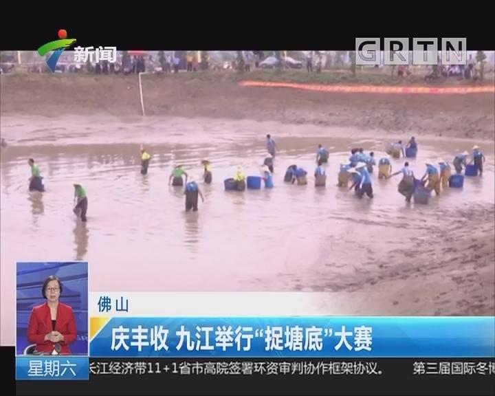 """佛山:庆丰收 九江举行""""捉塘底""""大赛"""