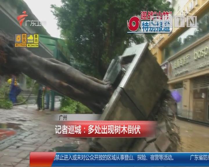 广州 记者巡城:多处出现树木倒伏