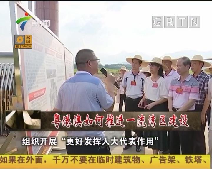 [2018-09-15]人大代表:粤港澳如何推进一流湾区建设