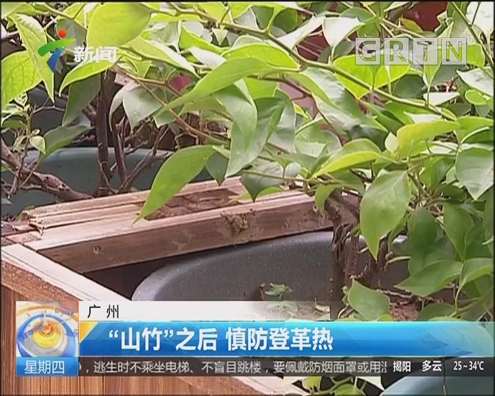 """廣州:""""山竹""""之后 慎防登革熱"""