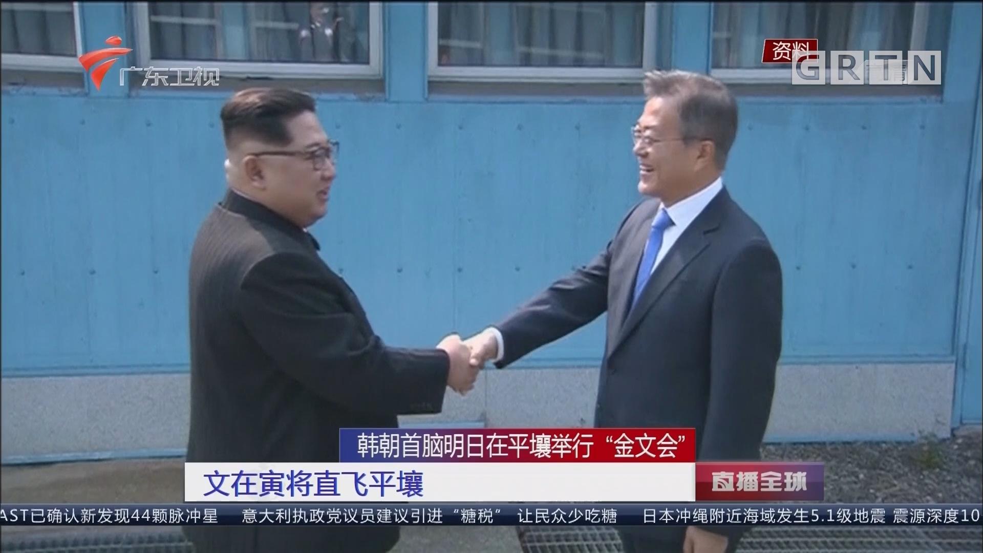 """韩朝首脑明日在平壤举行""""金文会"""":文在寅将直飞平壤"""