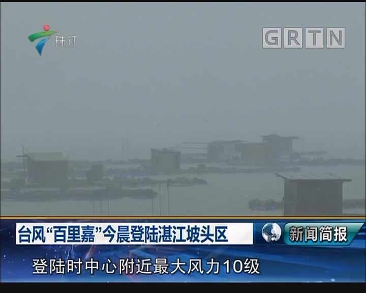"""台风""""百里嘉""""今晨登陆湛江坡头区"""