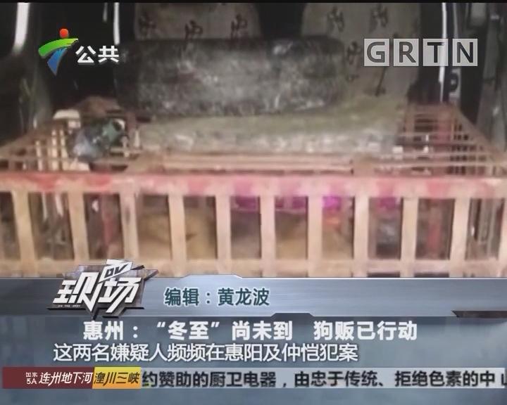 """惠州:""""冬至""""尚未到 狗贩已行动"""