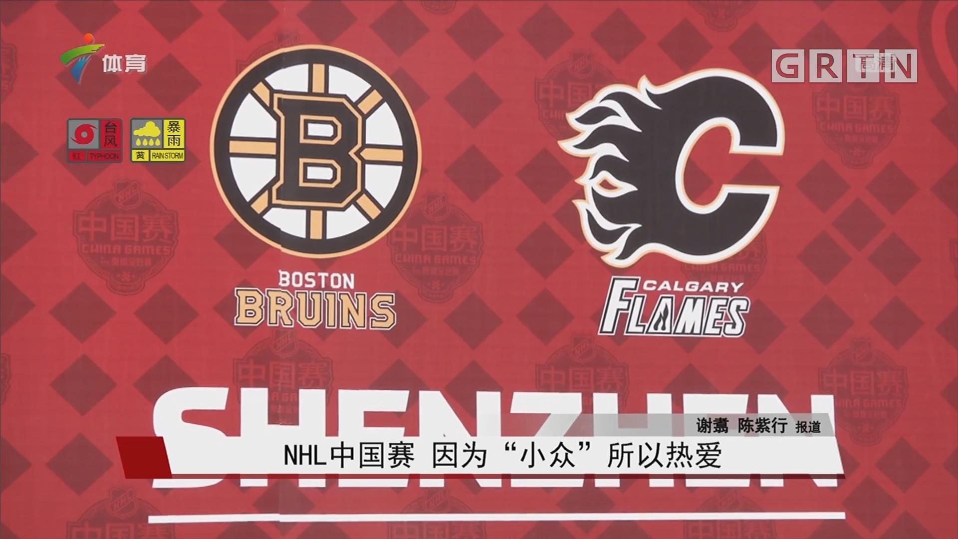 "NHL中国赛 因为""小众""所以热爱"
