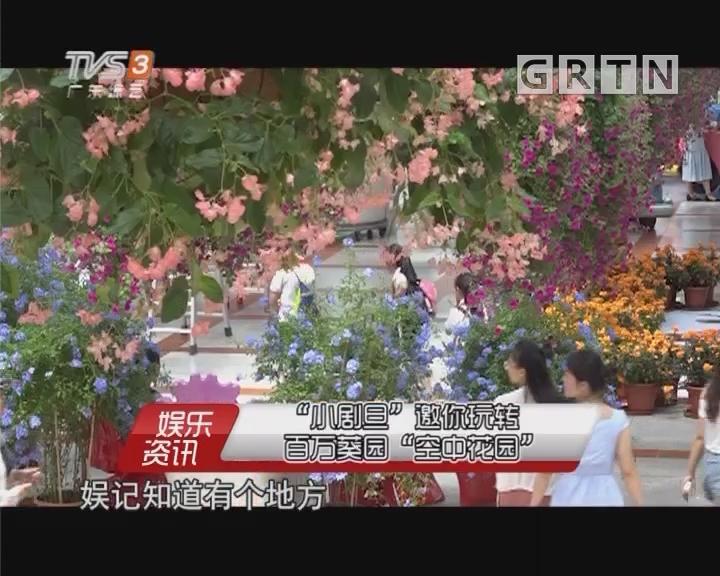 """""""小劇旦""""邀你玩轉百萬葵園""""空中花園"""""""
