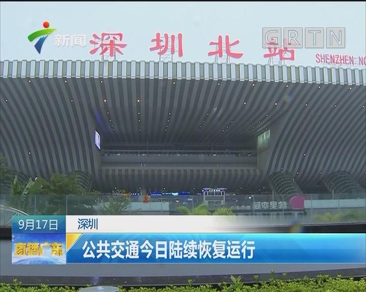 深圳:公共交通今日陆续恢复运行