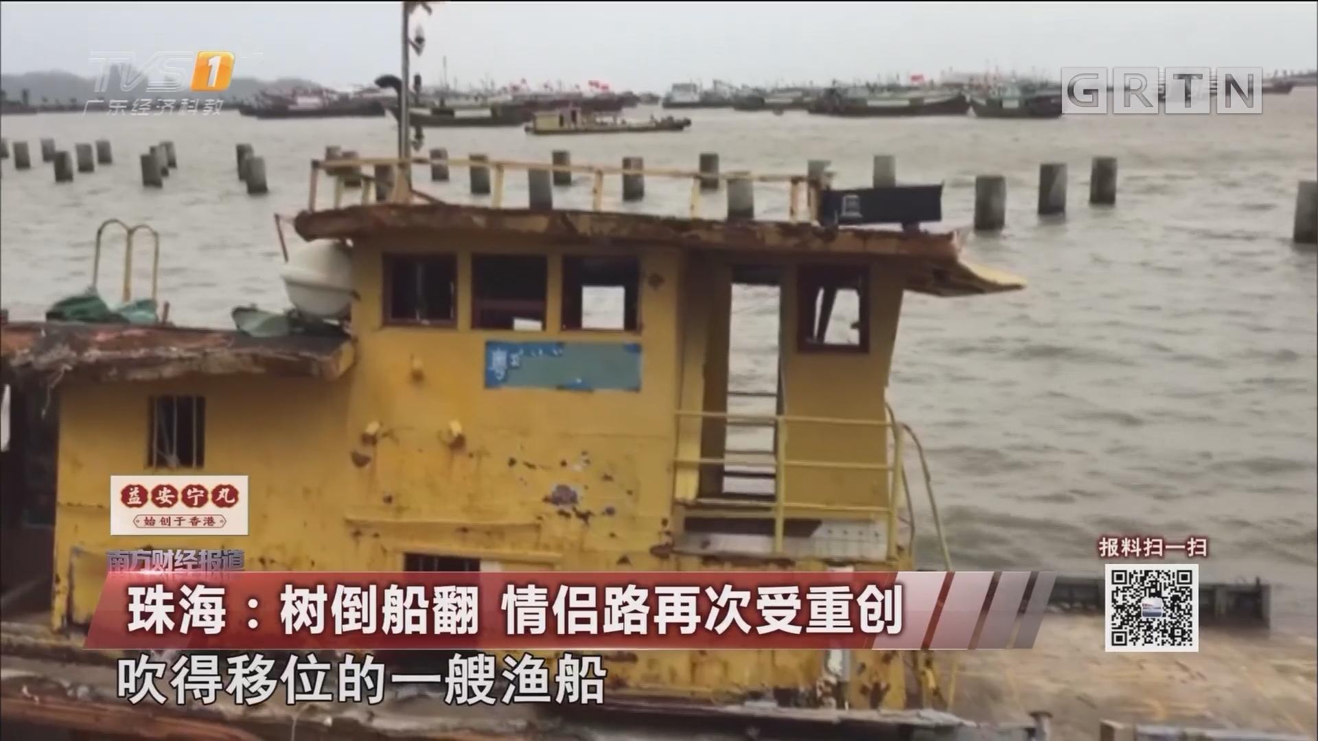 珠海:树倒船翻 情侣路再次受重创