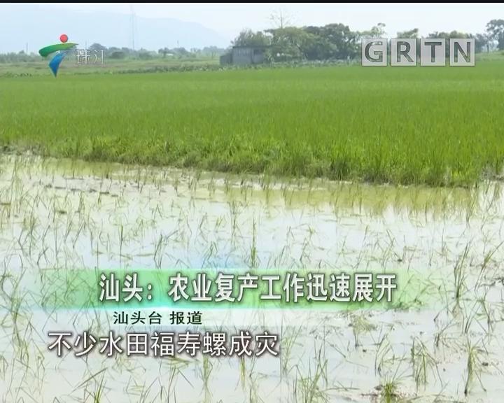 汕头:农业复产工作迅速展开