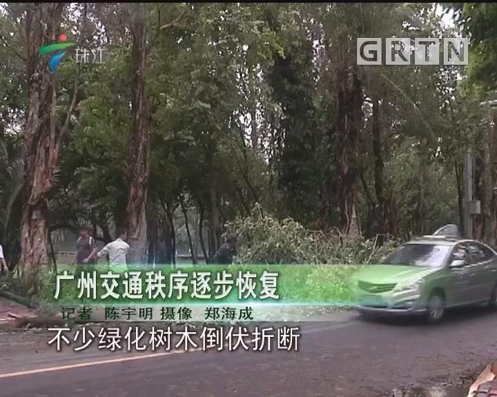 广州交通秩序逐步恢复