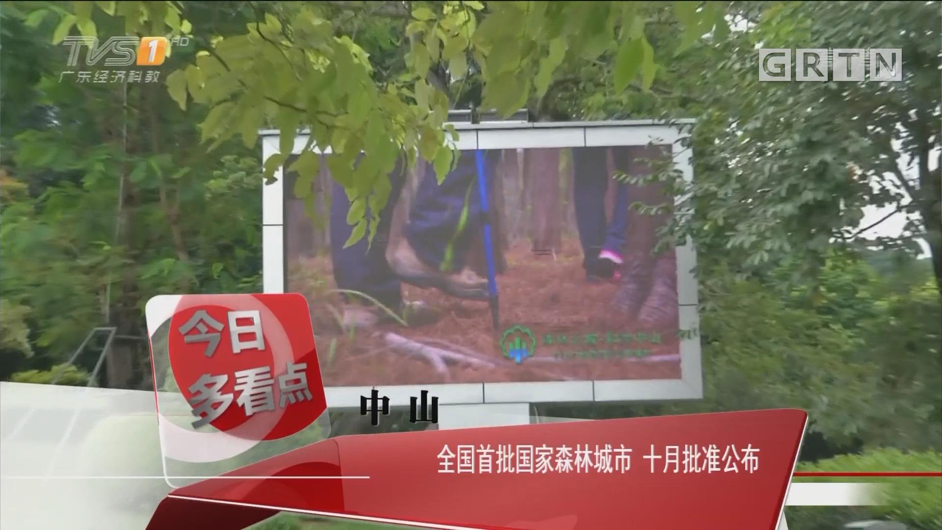中山:全国首批国家森林城市 十月批准公布