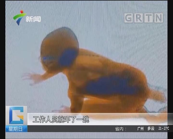 关注儿童出行安全:吓人!广珠城轨小榄站安检仪惊现人形影像