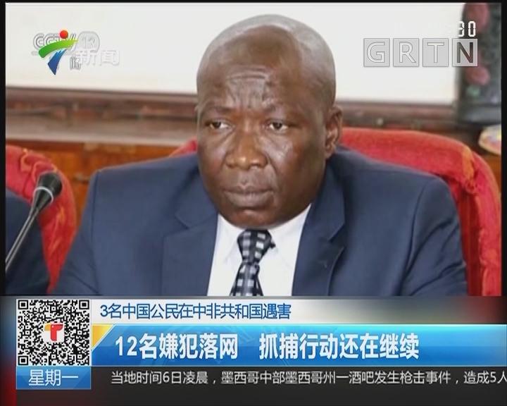 3名中国公民在中非共和国遇害:12名嫌犯落网 抓捕行动还在继续