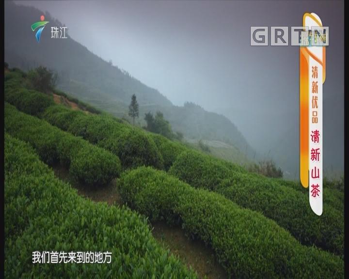 [2018-10-22]摇钱树:清新优品 清新山茶