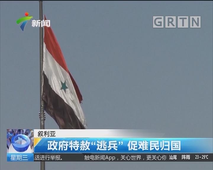 """叙利亚:政府特赦""""逃兵""""促难民归国"""