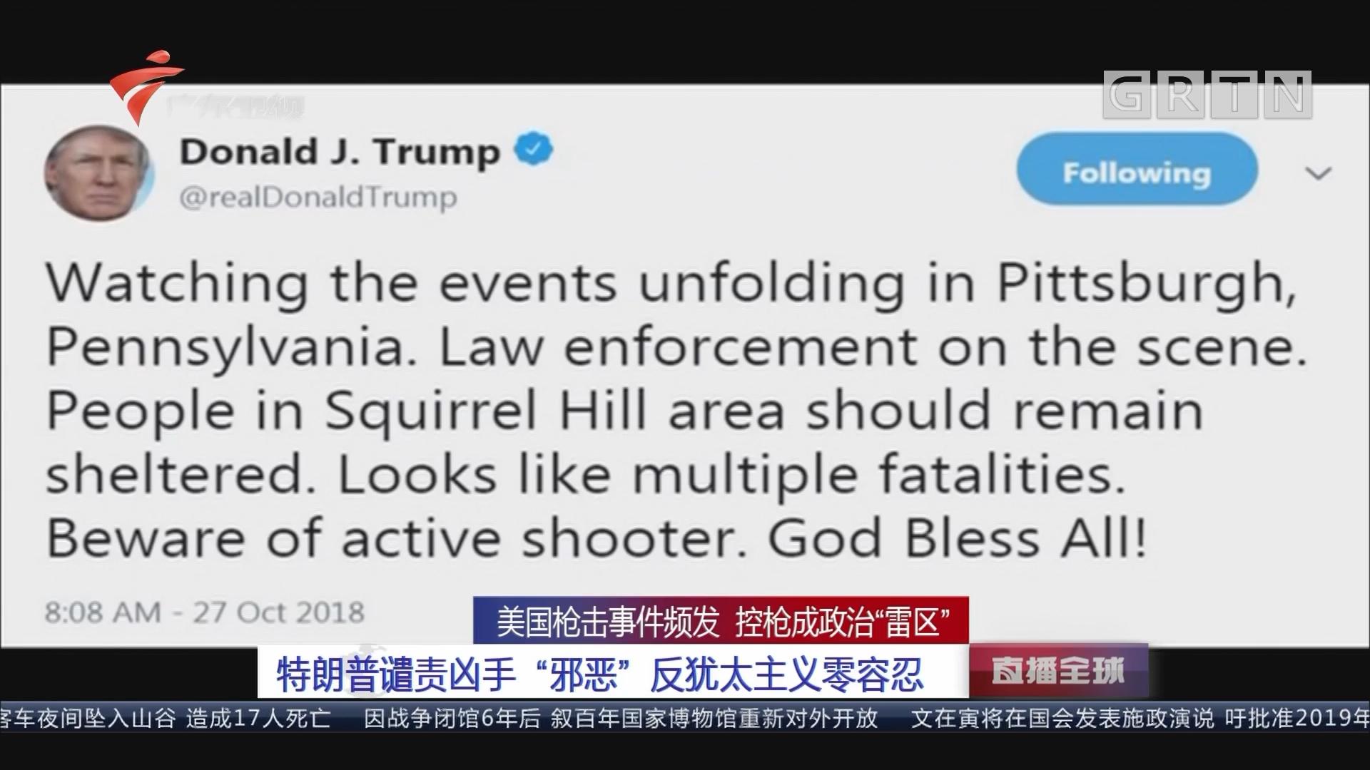 """美国枪击事件频发 控枪成政治""""雷区"""":特朗普谴责凶手""""邪恶""""反犹太主义零容忍"""