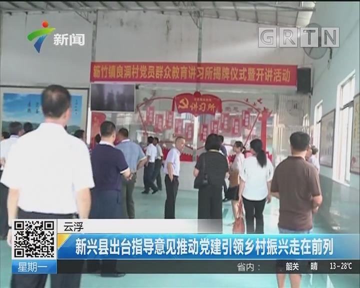 云浮:新兴县出台指导意见推动党建引领乡村振兴走在前列