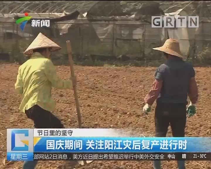 节日里的坚守:国庆期间 关注阳江灾后复产进行时