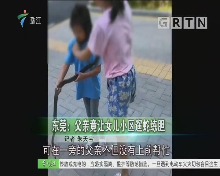 东莞:父亲竟让女儿小区遛蛇练胆