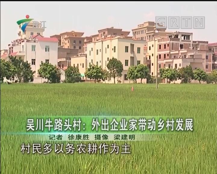 吴川牛路头村:外出企业家带动乡村发展
