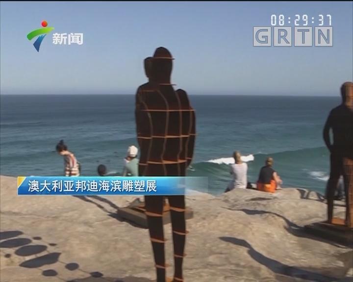 澳大利亚邦迪海滨雕塑展
