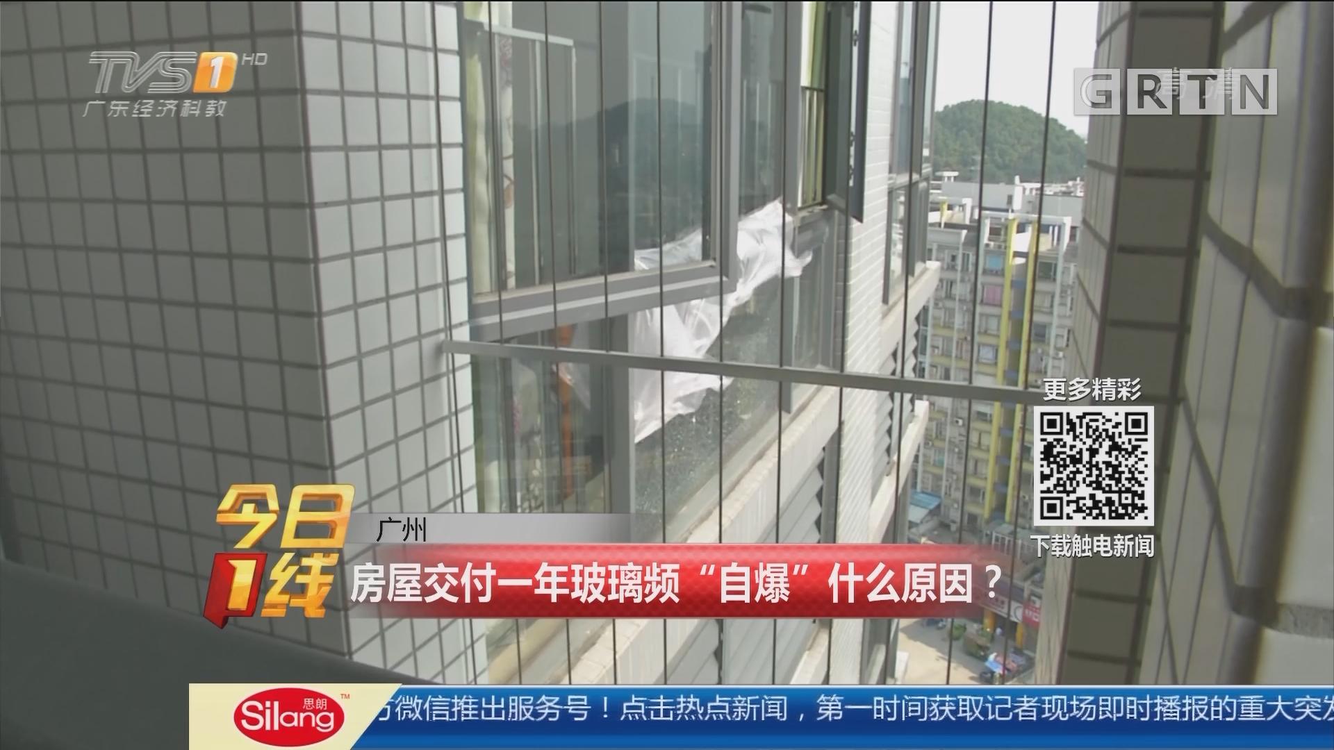 """广州:房屋交付一年玻璃频""""自爆""""什么原因?"""