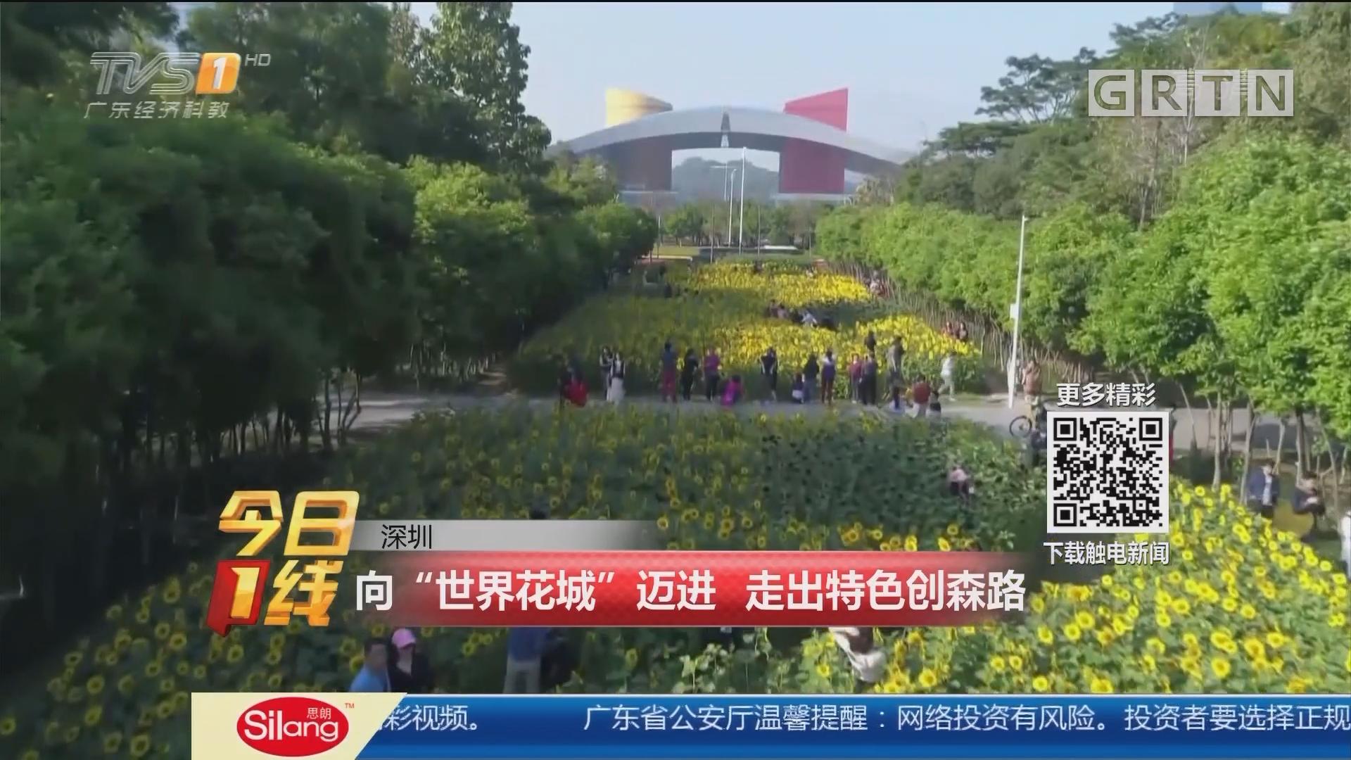 """深圳:向""""世界花城""""迈进 走出特色创森路"""