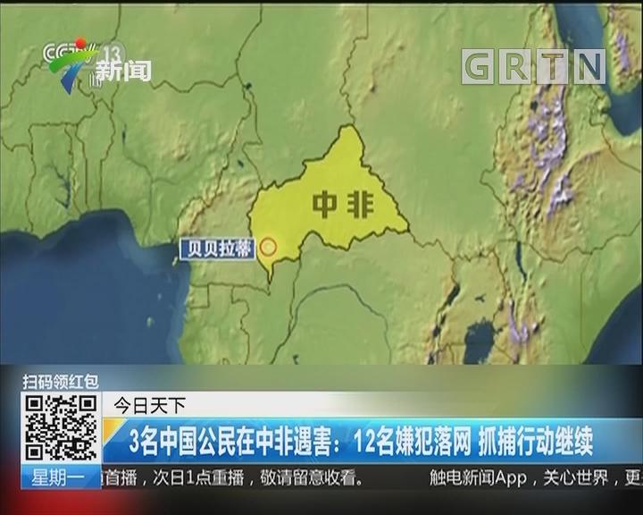 3名中国公民在中非遇害:12名嫌犯落网 抓捕行动继续