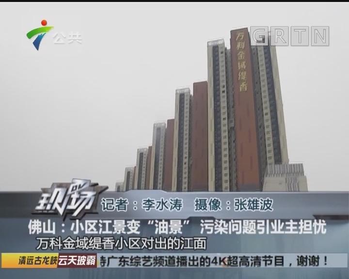 """佛山:小区江景变""""油景"""" 污染问题引业主担忧"""