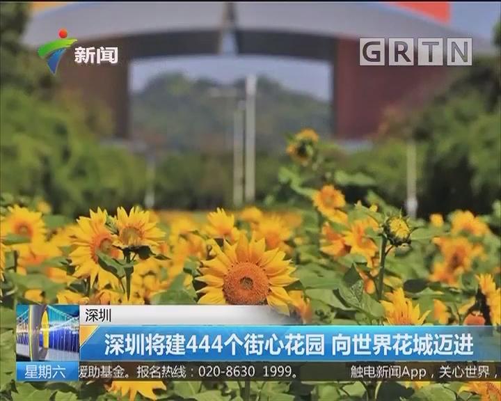 深圳:深圳将建444个街心花园 向世界花城迈进