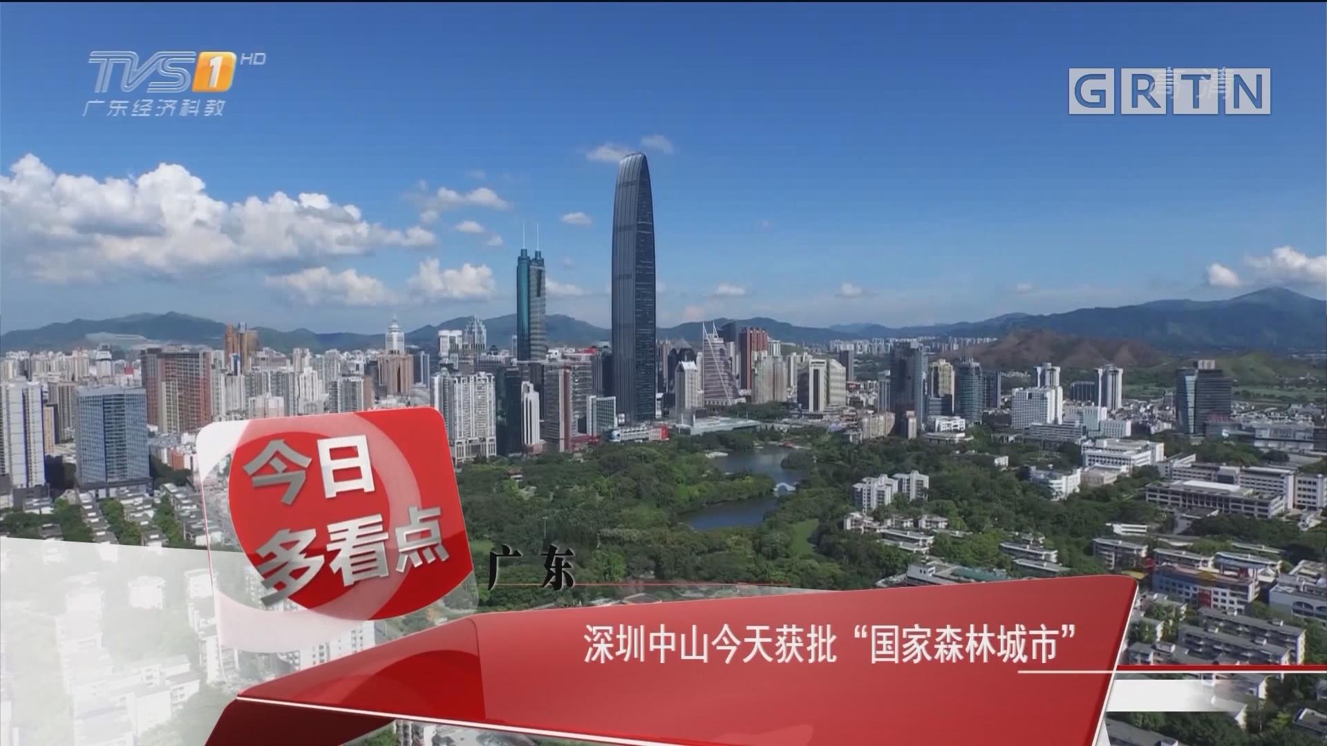 """广东:深圳中山今天获批""""国家森林城市"""""""