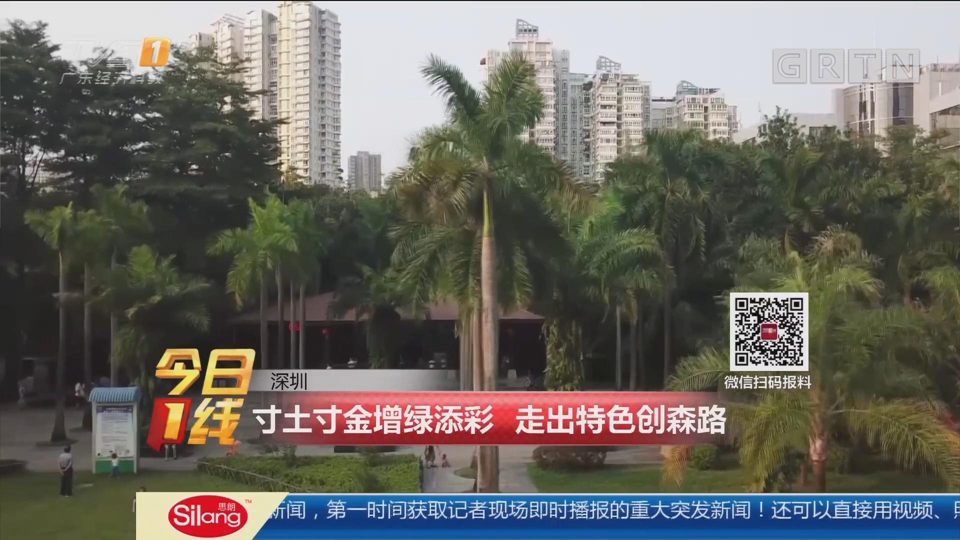 深圳:寸土寸金增绿添彩 走出特色创森路