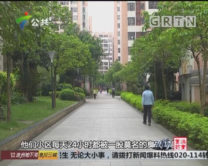 肇庆:居民区臭味扰民 环保局介入处理