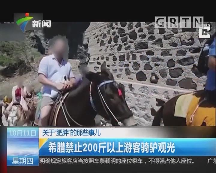 """关于""""肥胖""""的那些事儿 希腊禁止200斤以上游客骑驴观光"""