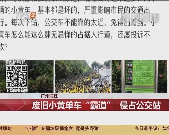 """广州海珠:废旧小黄单车""""霸道"""" 侵占公交站"""