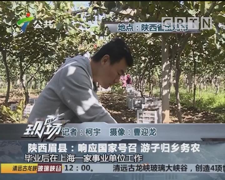 陕西眉县:响应国家号召 游子归乡务农