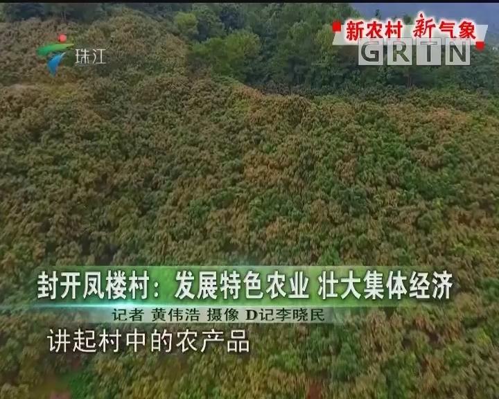 封开凤楼村:发展特色农业 壮大集体经济