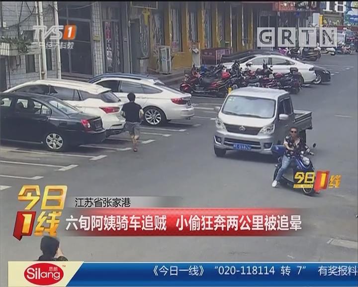 江苏省张家港:六旬阿姨骑车追贼 小偷狂奔两公里被追晕