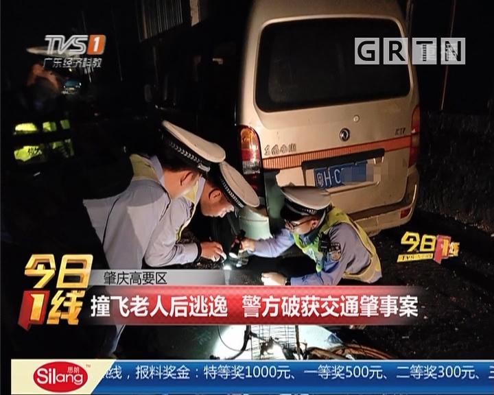 肇庆高要区:撞飞老人后逃逸 警方破获交通肇事案