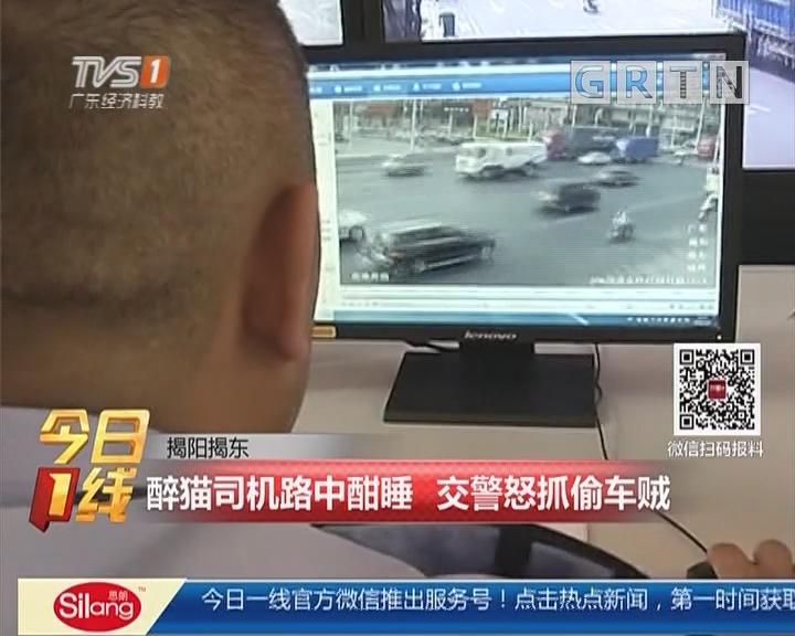 揭阳揭东:醉猫司机路中酣睡 交警怒抓偷车贼
