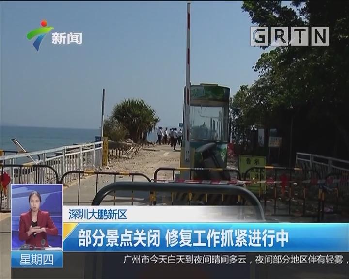 深圳大鹏新区:部分景点关闭 修复工作抓紧进行中