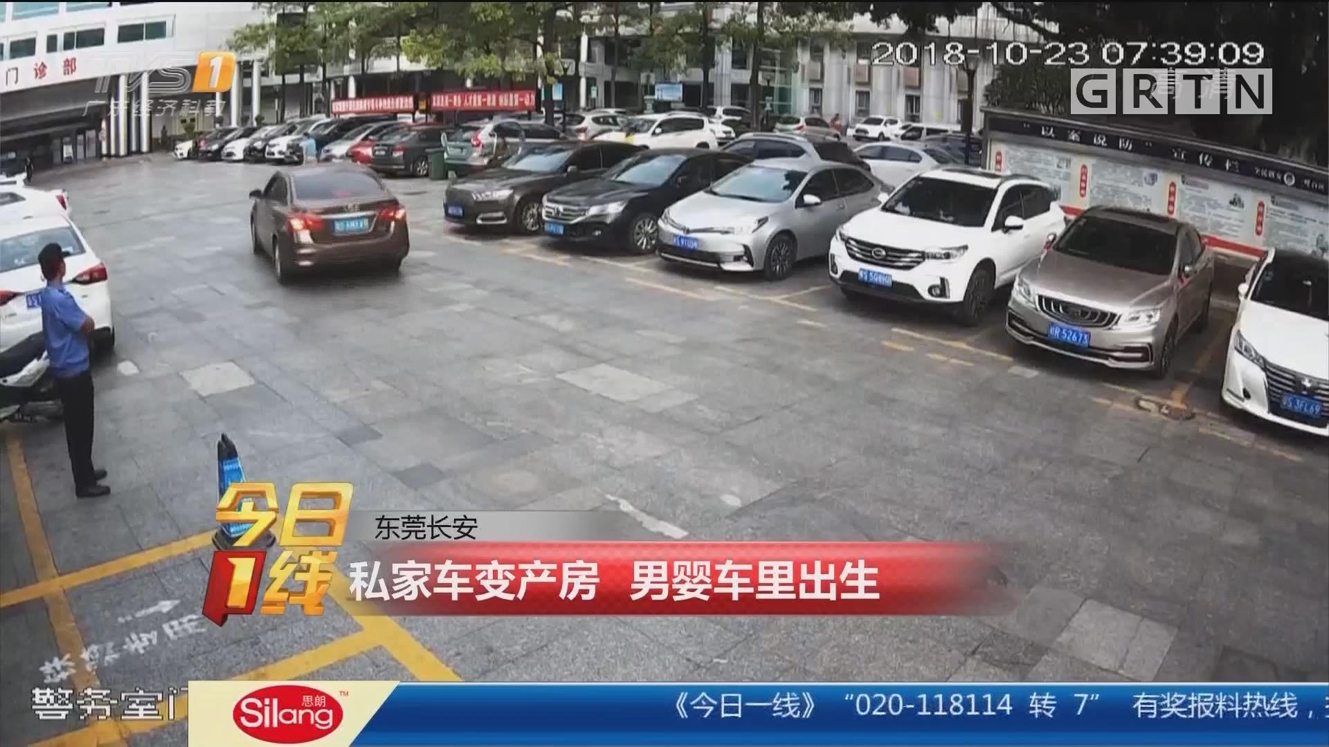 东莞长安:私家车变产房 男婴车里出生