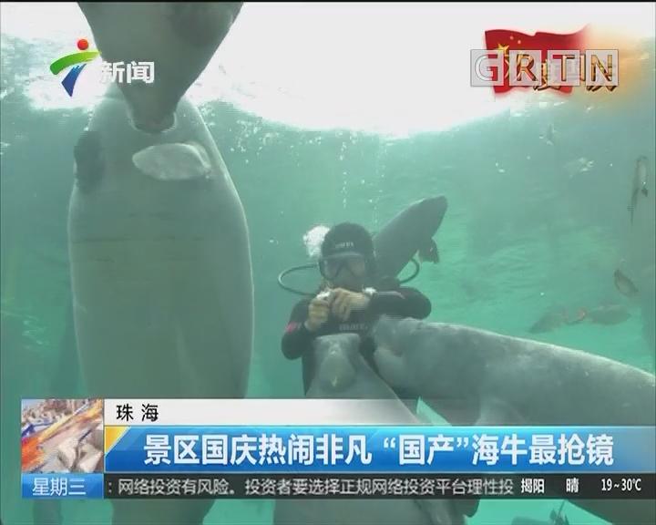"""珠海:景区国庆热闹非凡 """"国产""""海牛最抢镜"""