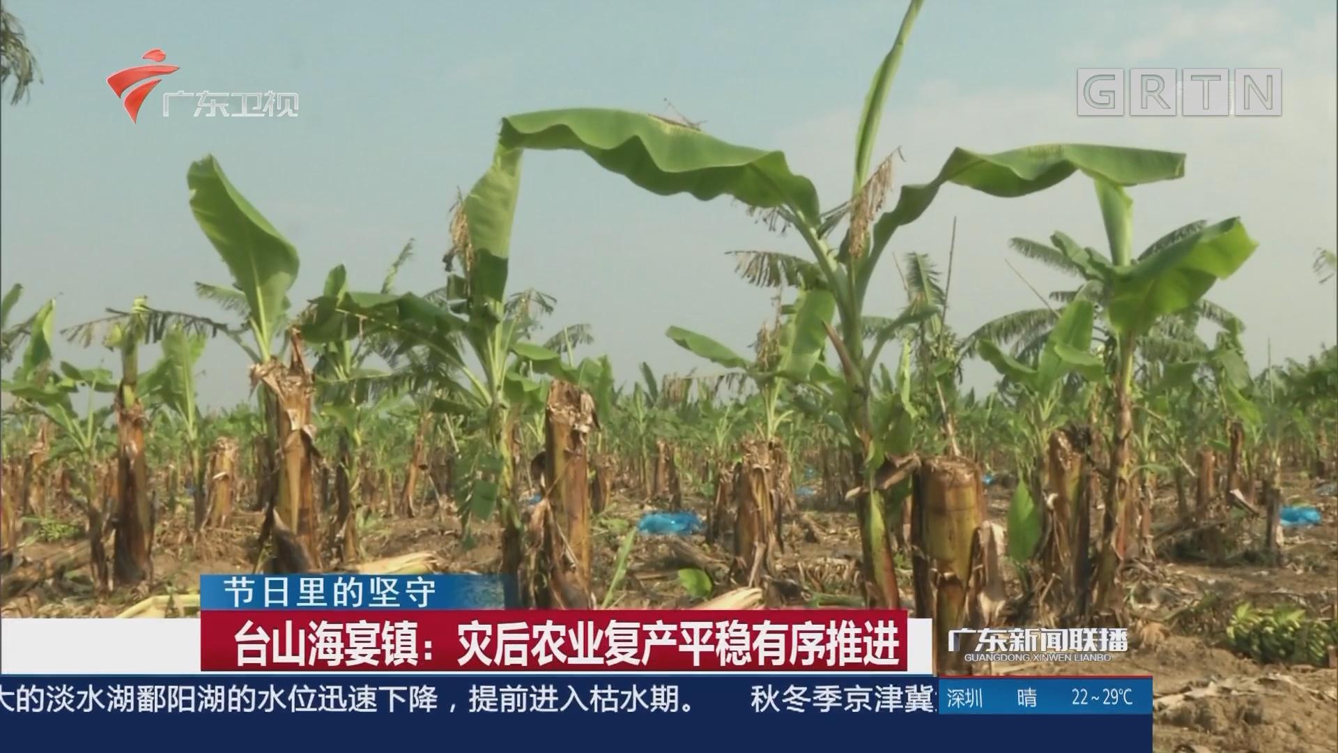 台山海宴镇:灾后农业复产平稳有序推进
