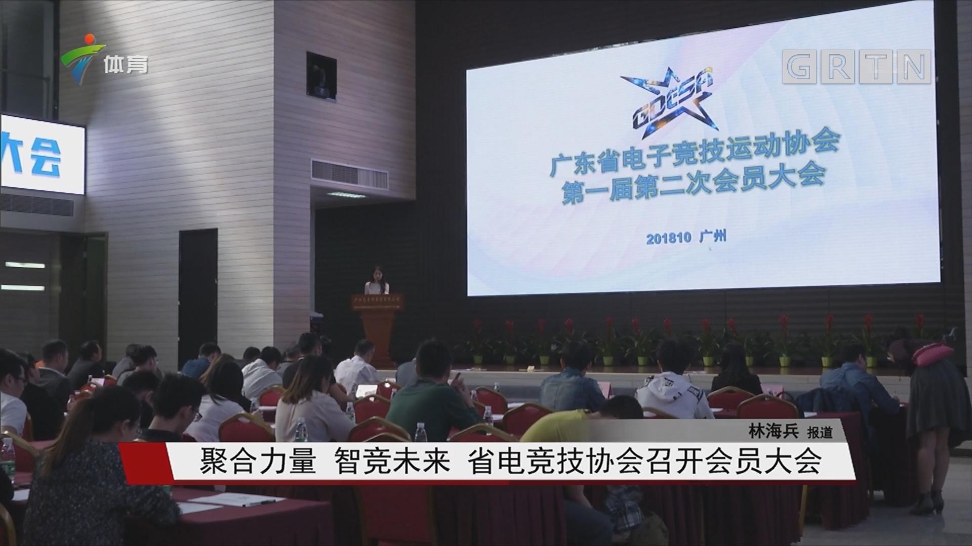 聚合力量 智竞未来 省电竞技协会召开会员大会