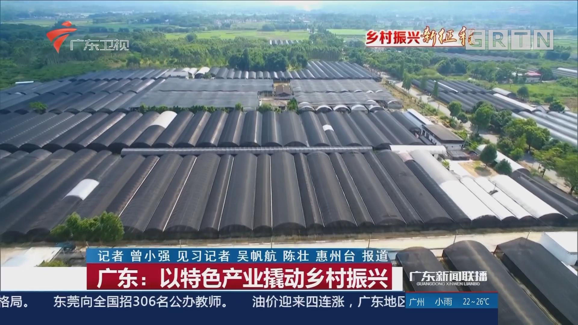 广东:以特色产业撬动乡村振兴